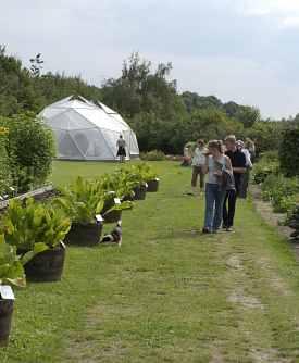 odder økologiske have